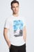 T-shirt SC-Deland – S.C. Collection, blanc